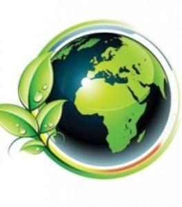 ace environnement