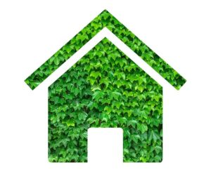 Environnement-Envir-Changé