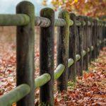 Jardin : quel type de clôture choisir ?