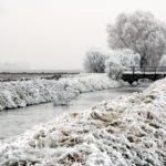 Neige en Alsace et à Strasbourg