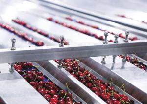 machine calibrage fruits