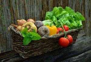 fruits et légumes à cultiver
