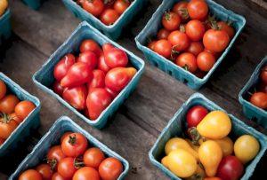 les fruits et légumes dans tous leurs états